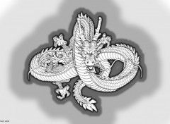 Fonds d'écran Manga Dragon 02