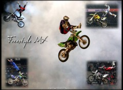 Fonds d'écran Motos Freestyle mx