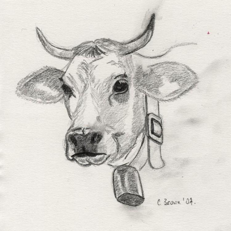 Fonds d'écran Art - Crayon Animaux - Vaches ... retour de vacances...