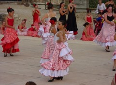 Wallpapers Sports - Leisures flamenco