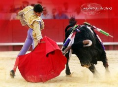 Wallpapers Sports - Leisures corrida