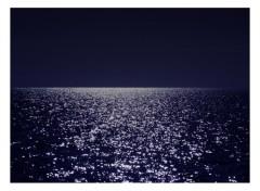 Fonds d'écran Nature Sous la lune