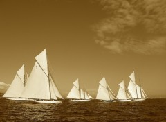 Wallpapers Boats Armada de voiles auriques à Saint-Tropez