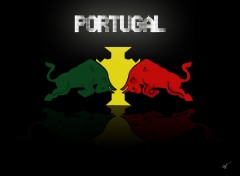 Wallpapers Trips : Europ PortugalBull