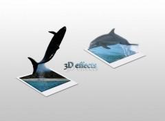 Fonds d'écran Animaux 3D effects