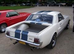 Fonds d'écran Voitures Pick-up Ford Mustang
