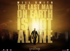 Wallpapers Movies I Am Legend