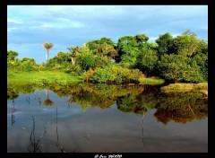 Fonds d'écran Nature Nature en reflets