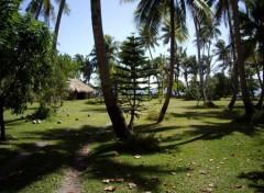Fonds d'écran Voyages : Océanie La cote Est de Nouvelle Calédonie