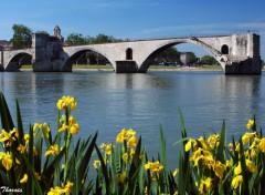 Fonds d'écran Voyages : Europe Iris