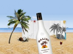 Wallpapers Objects MALIBU RUM