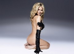 Fonds d'écran Célébrités Femme heidi nude