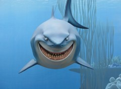 Wallpapers Cartoons LE REQUIN (Le monde de Némo - Disney)