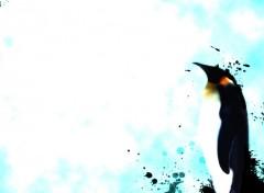 Wallpapers Digital Art Pingouin
