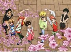 Fonds d'écran Manga sakura