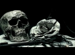 Wallpapers Fantasy and Science Fiction skull&rose