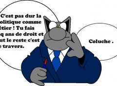 Wallpapers Humor Le chat