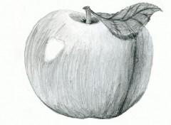 Fonds d'écran Art - Crayon Pomme