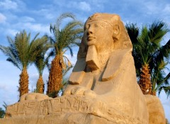 Wallpapers Trips : Africa The Sphinx, Luxor,