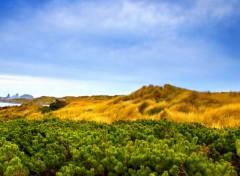 Fonds d'écran Nature Paysage méditerranéen
