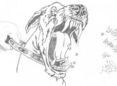 Fonds d'écran Art - Crayon chien enragé