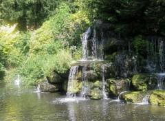 Fonds d'écran Nature des cygnes foncent vers la cascade