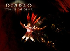 Wallpapers Video Games Witch Doctor