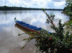 Wallpapers Trips : South America Pirogue bleue
