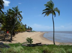 Wallpapers Trips : South America Plage des Roches