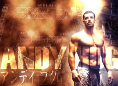 Wallpapers Sports - Leisures andy hug légende