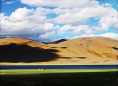 Wallpapers Trips : Asia Inde 2