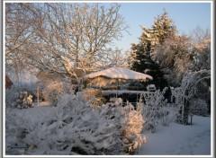 Fonds d'écran Nature Jardin sous la neige