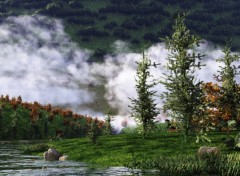 Wallpapers Digital Art Nuages bas en foret