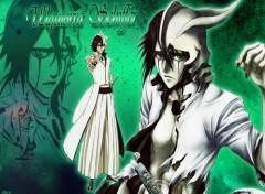 Fonds d'écran Manga Bleach - Ulquiorra Schiffer