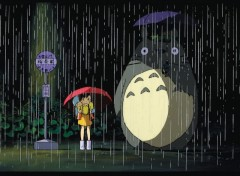 Fonds d'écran Dessins Animés Totoro