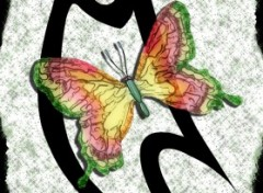 Wallpapers Digital Art papillon