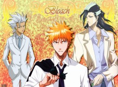 Fonds d'écran Manga Bleach Elegancy by rtk12
