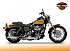 Fonds d'écran Motos Harley-davidson