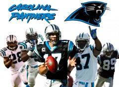 Wallpapers Sports - Leisures Carolina Panthers by YuKiKi