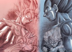 Fonds d'écran Manga Son Goku VS Vegeta