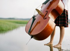 Wallpapers Music Violoncelliste les pieds humides
