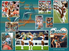 Wallpapers Sports - Leisures The Cheerleaders Miami Dolphins