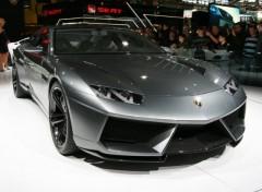 Wallpapers Cars Lamborghini Estoque