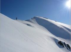 Fonds d'écran Nature le sommet