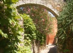 Fonds d'écran Voyages : Europe une verdure si flamboyante