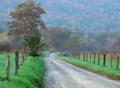 Fonds d'écran Nature Route