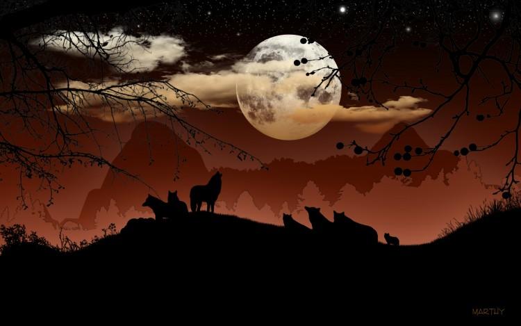 dans fond ecran pleine lune 090610233248_90
