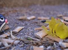 Fonds d'écran Objets Fumer tue, et c'est pas cool de mourir comme ça, pauvre petit Pikachu