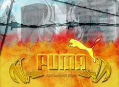 Wallpapers Brands - Advertising puma31
