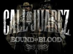 Fonds d'écran Jeux Vidéo call of juarez : bound in blood